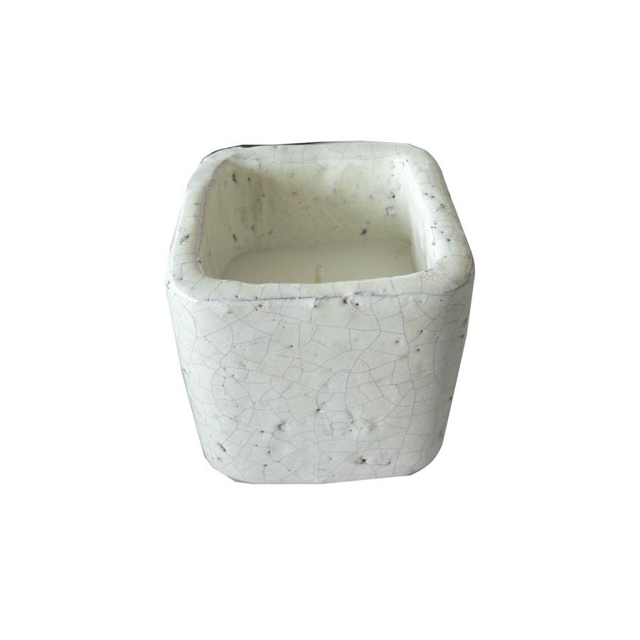 Garden Treasures 1-Wick White Tabletop Citronella Candle