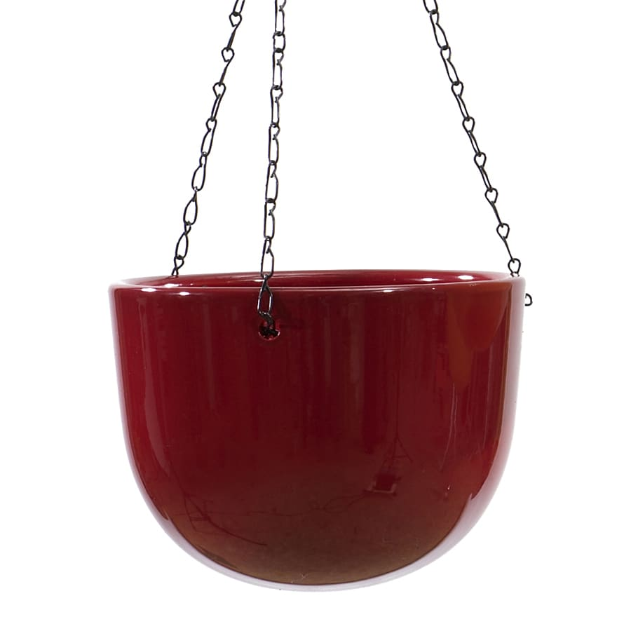 7.1-in x 6-in Bordeaux Ceramic Hanging Planter