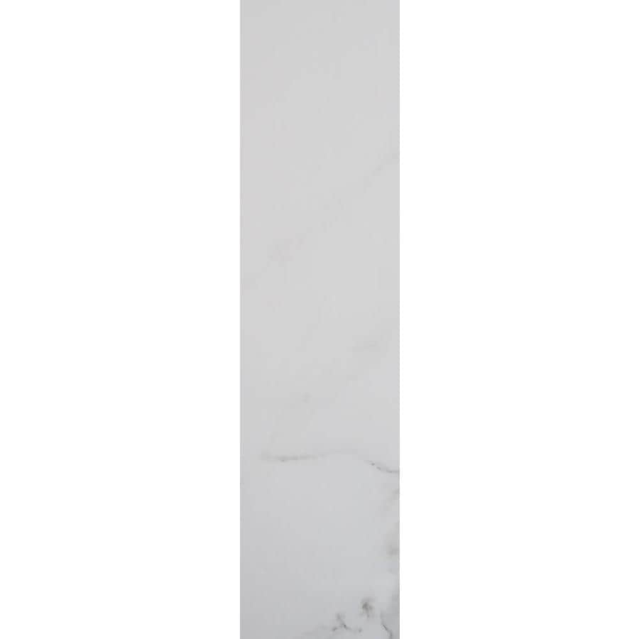 FLOORS 2000 Calacatta White Porcelain Bullnose Tile (Common: 3-in X 12-in; Actual: 11.77-in x 3-in)