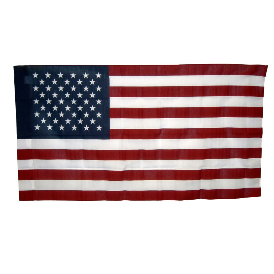 Independence Flag 4-ft W x 2.5-ft H American Flag