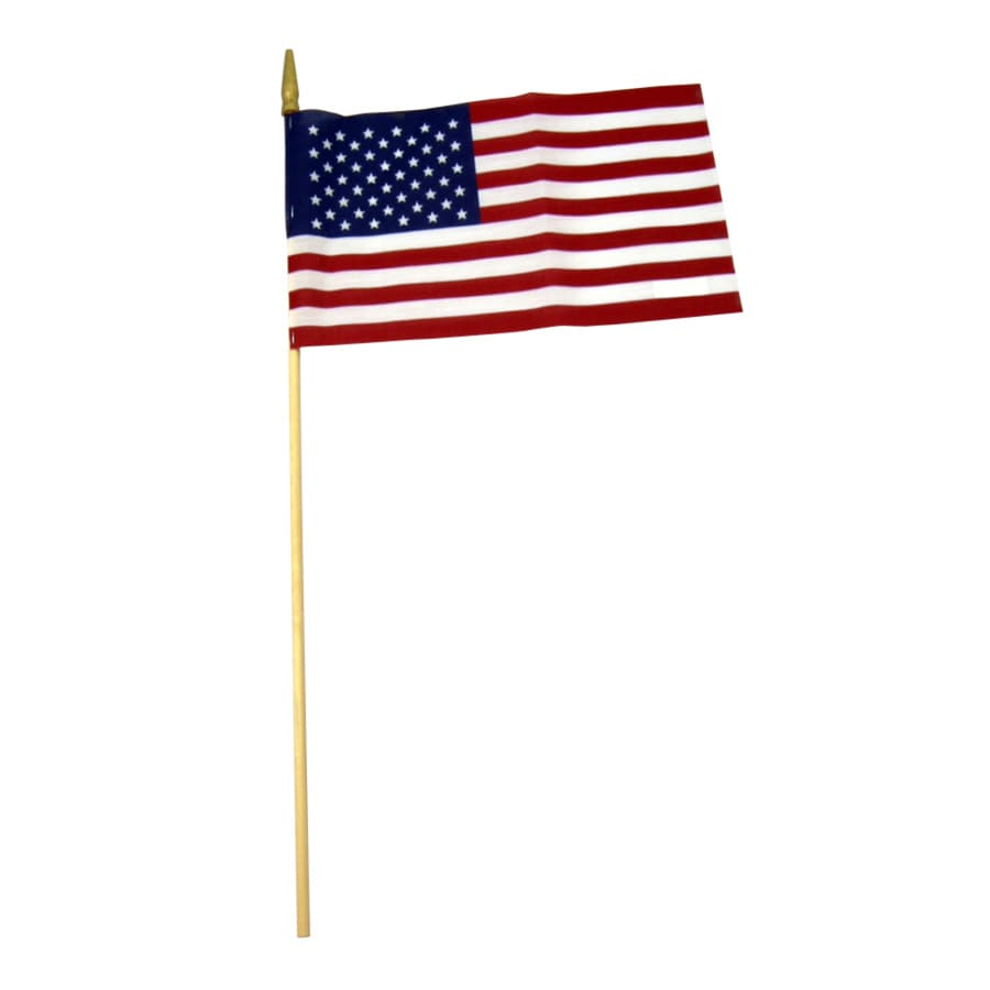 Independence Flag 1-ft W x 0.66-ft H American Flag
