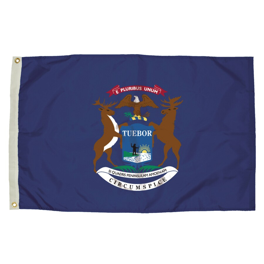 5-ft W x 3-ft H State Michigan Flag