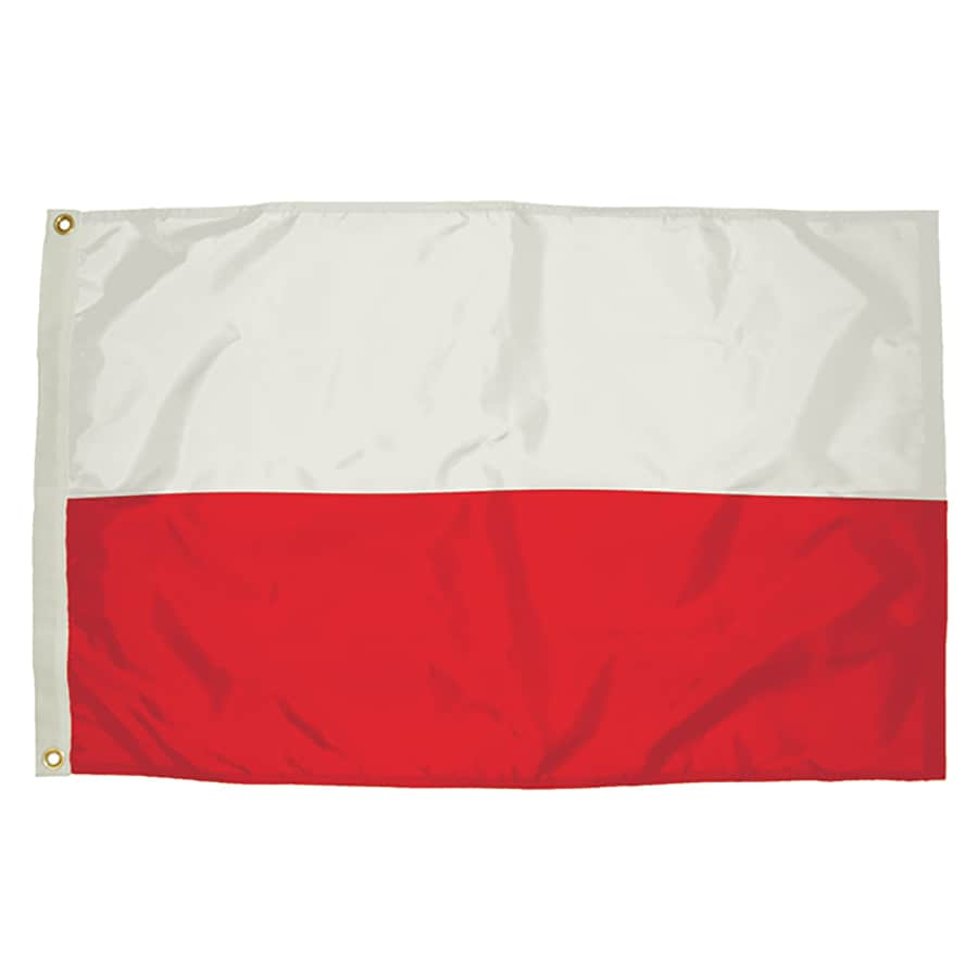 5-ft W x 3-ft H International Flag