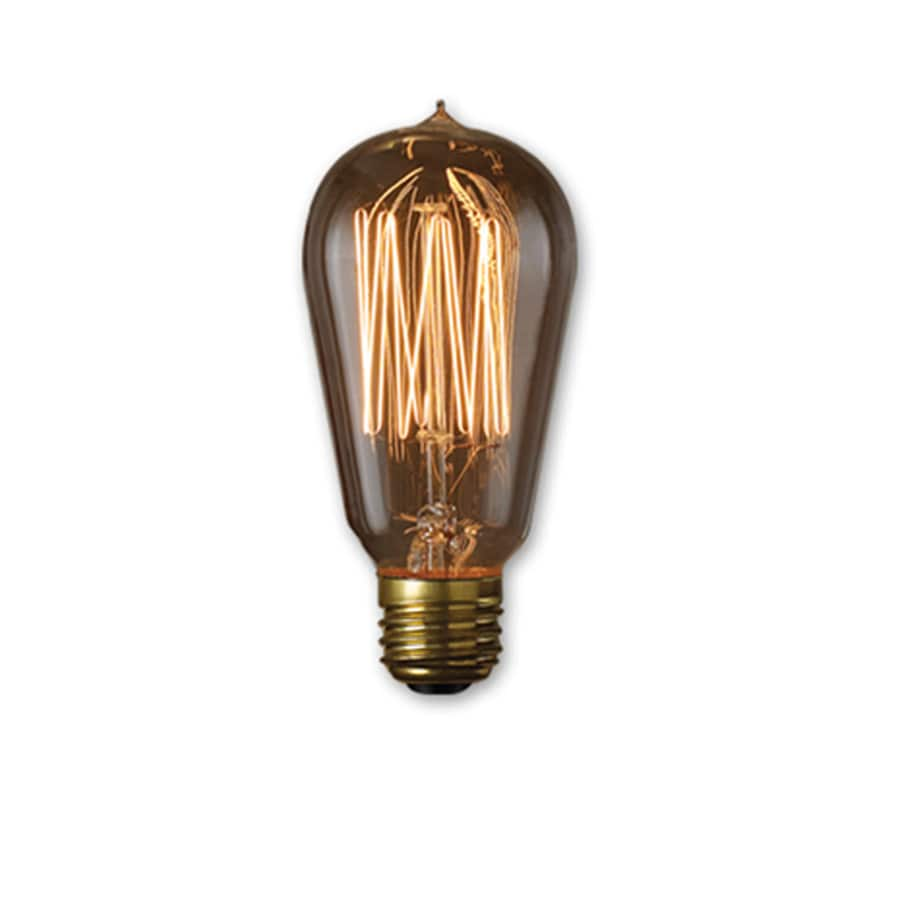 fashion Lighting Vintage Collection 60 Watt for Indoor or Enclosed Outdoor  Amber Incandescent Decorative Light Bulb