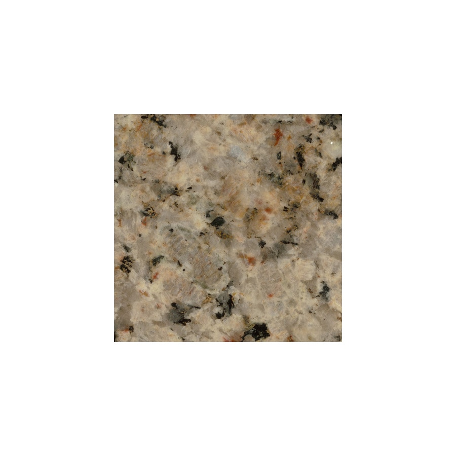 SenSa 2 In W X 3 In L Baltica Cream Granite Countertop Sample