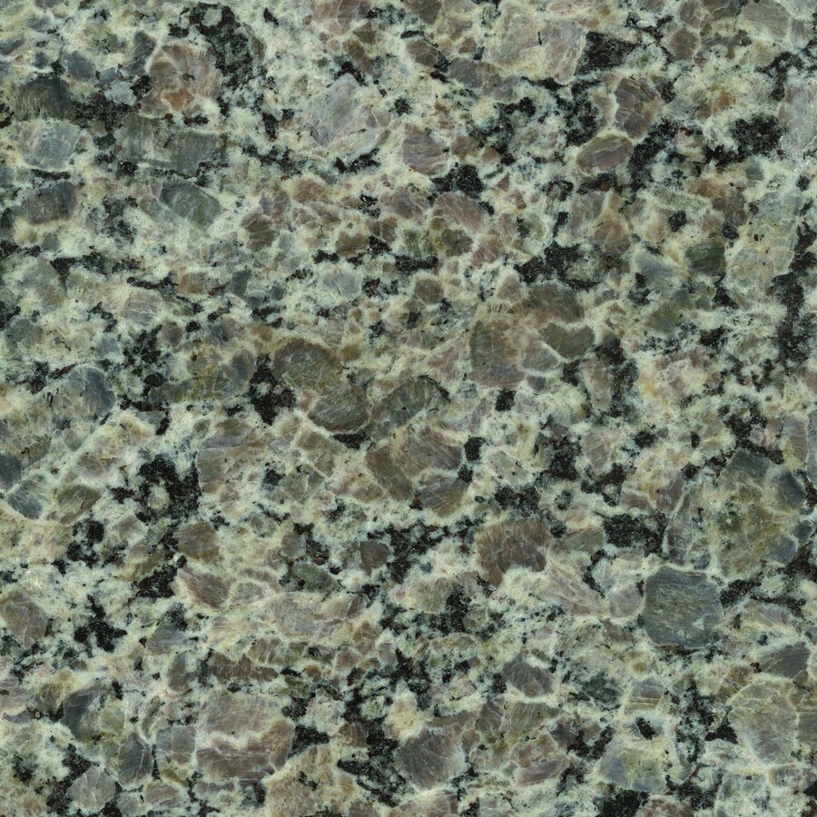 SenSa Caledonia Granite Kitchen Countertop Sample