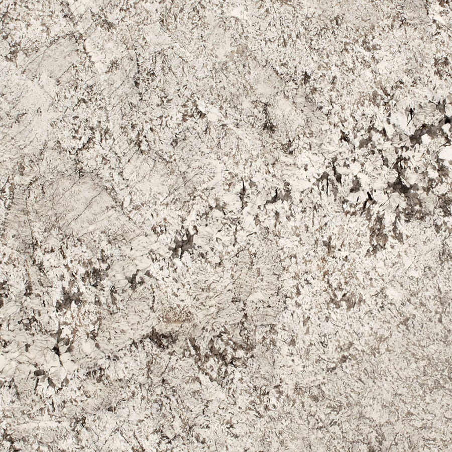 Shop Sensa Tangier Granite Kitchen Countertop Sample At