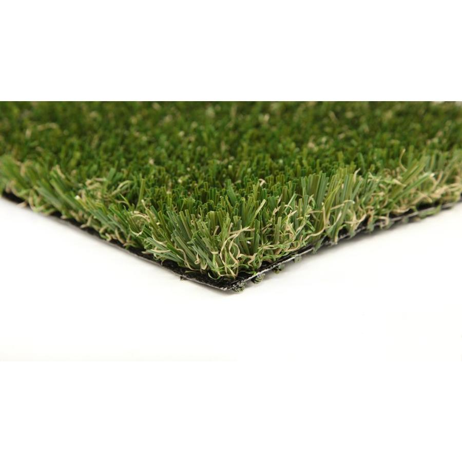 Everlast Sport/Pet 15-ft Wide Fescue Cut-to-Length Artificial Grass