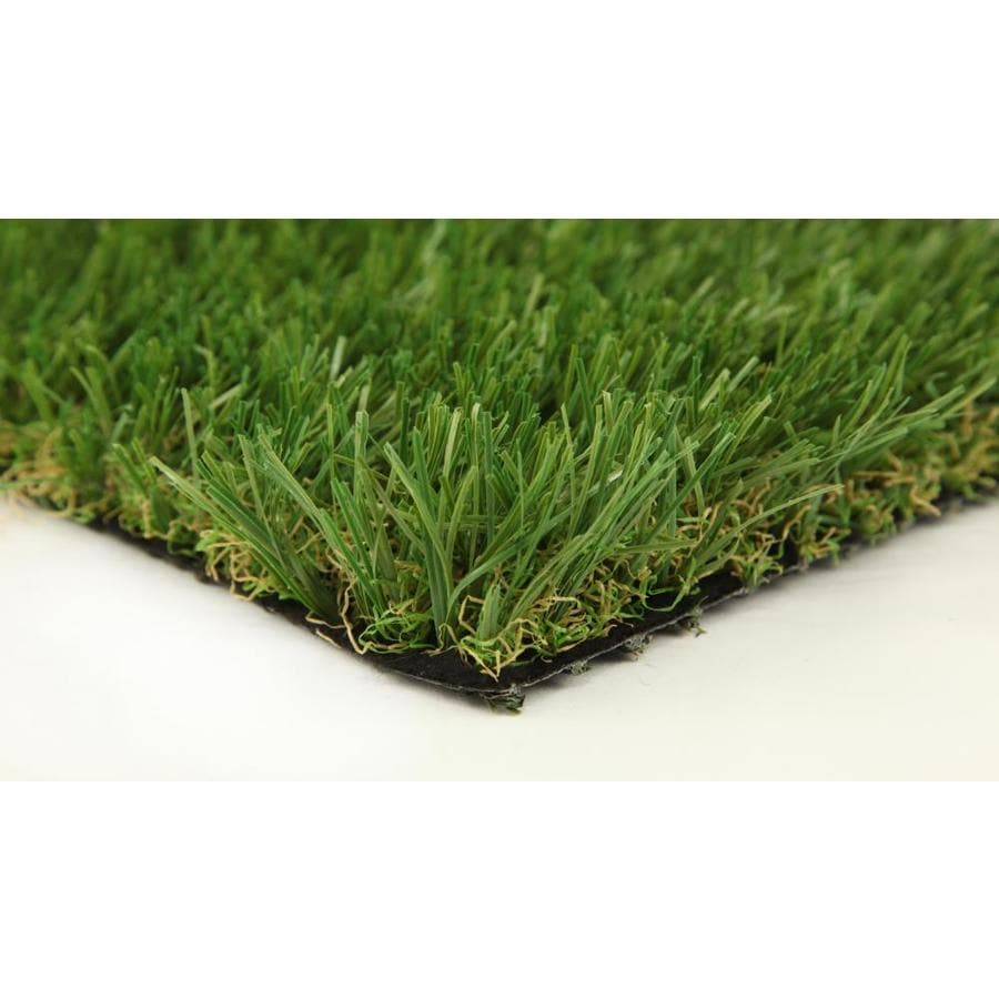 Everlast Sequoia 15-ft Wide Fescue Cut-to-Length Artificial Grass