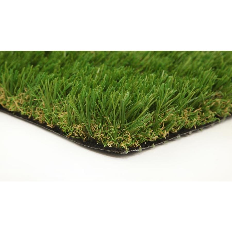 Lowes Grass Seed | Home Interior Design