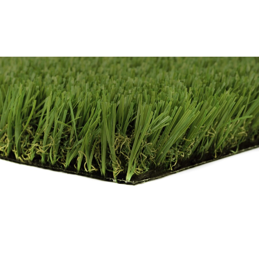 Everlast Tacoma Pro 7.5-ft Wide Fescue Cut-to-Length Artificial Grass