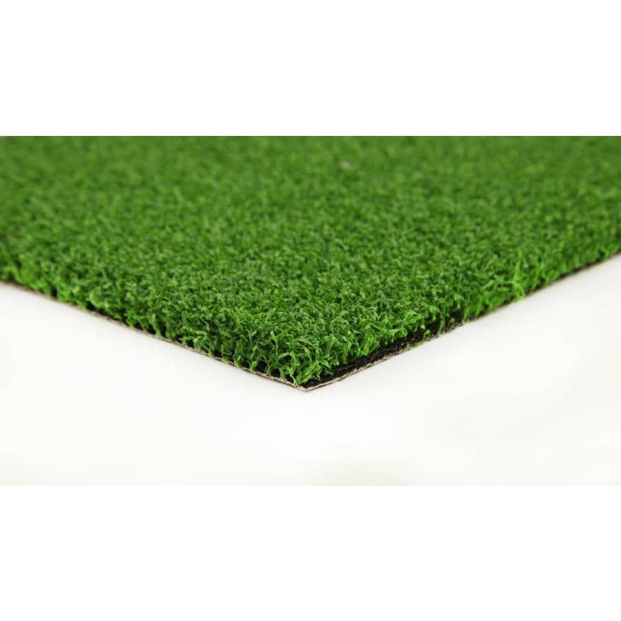 Everlast Putting Green 15-ft Wide Cut-to-Length Artificial Grass