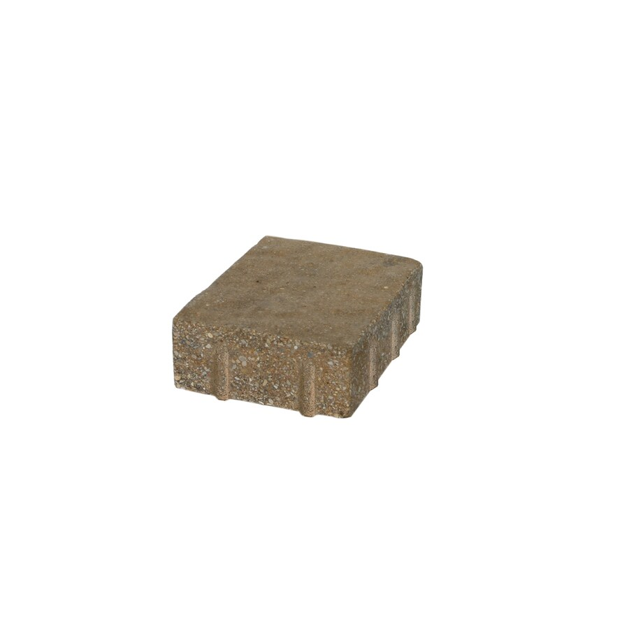 Country Manor Sur Paver (Common: 6-in x 9-in; Actual: 6-in x 9-in)