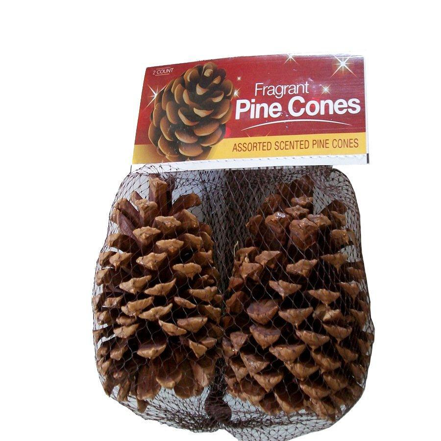 Tabletop Pinecone Decoration