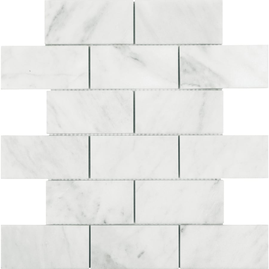 shop allen roth venatino polished brick mosaic marble