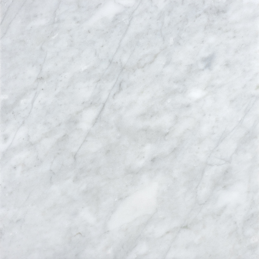 Shop allen roth Venatino White Marble Floor and Wall Tile Common