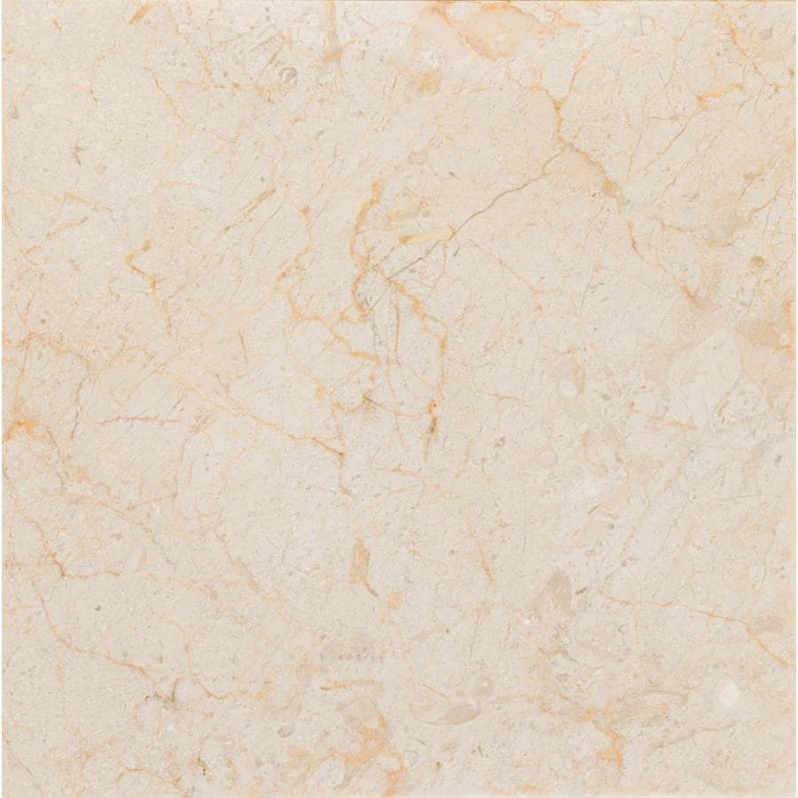 Anatolia Tile Marfil Ivory Marble Floor and Wall Tile (Common: 12-in x 12-in; Actual: 12-in x 12-in)