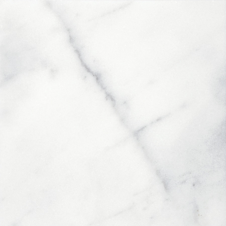 Anatolia Tile Bianco Glacier Marble Floor and Wall Tile (Common: 12-in x 12-in; Actual: 12-in x 12-in)