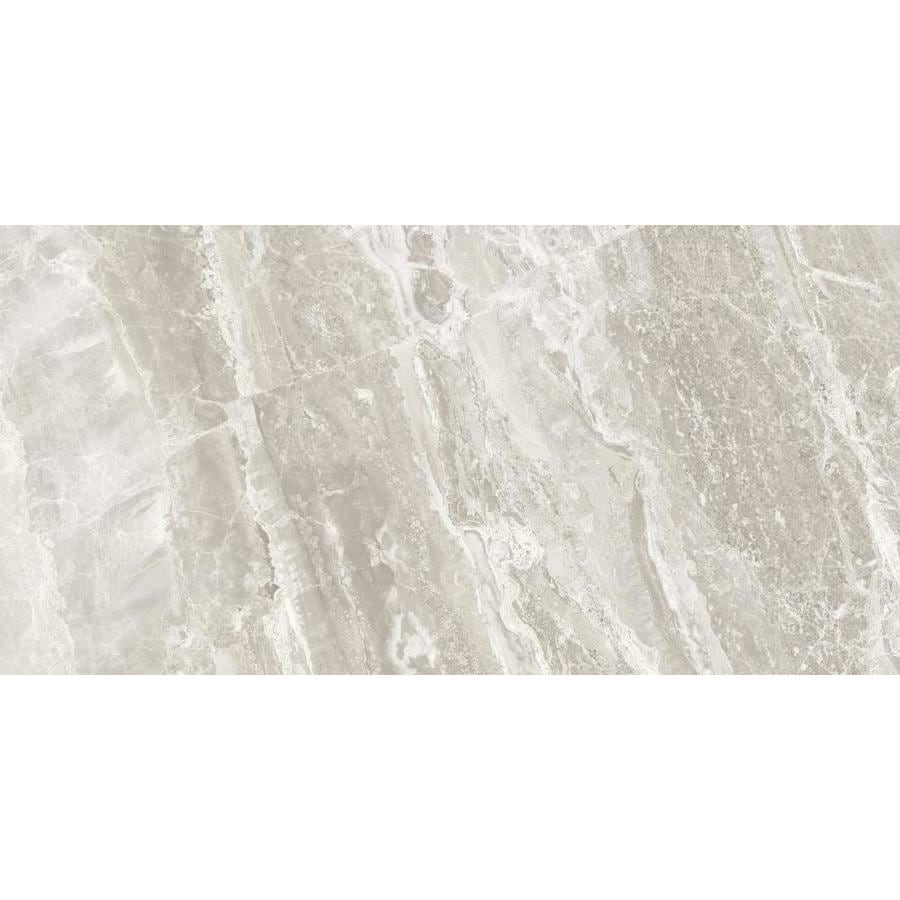 Anatolia Tile Porto Argento Porcelain Floor and Wall Tile (Common: 12-in x 24-in; Actual: 11.73-in x 23.62-in)