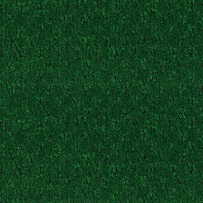Forest Green Textured Interior Exterior Carpet At Lowes