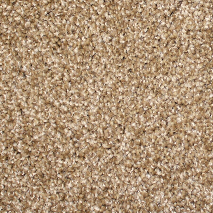 STAINMASTER PetProtect Nitro 12-ft W  x Cut-to-Length Brown Textured Interior Carpet