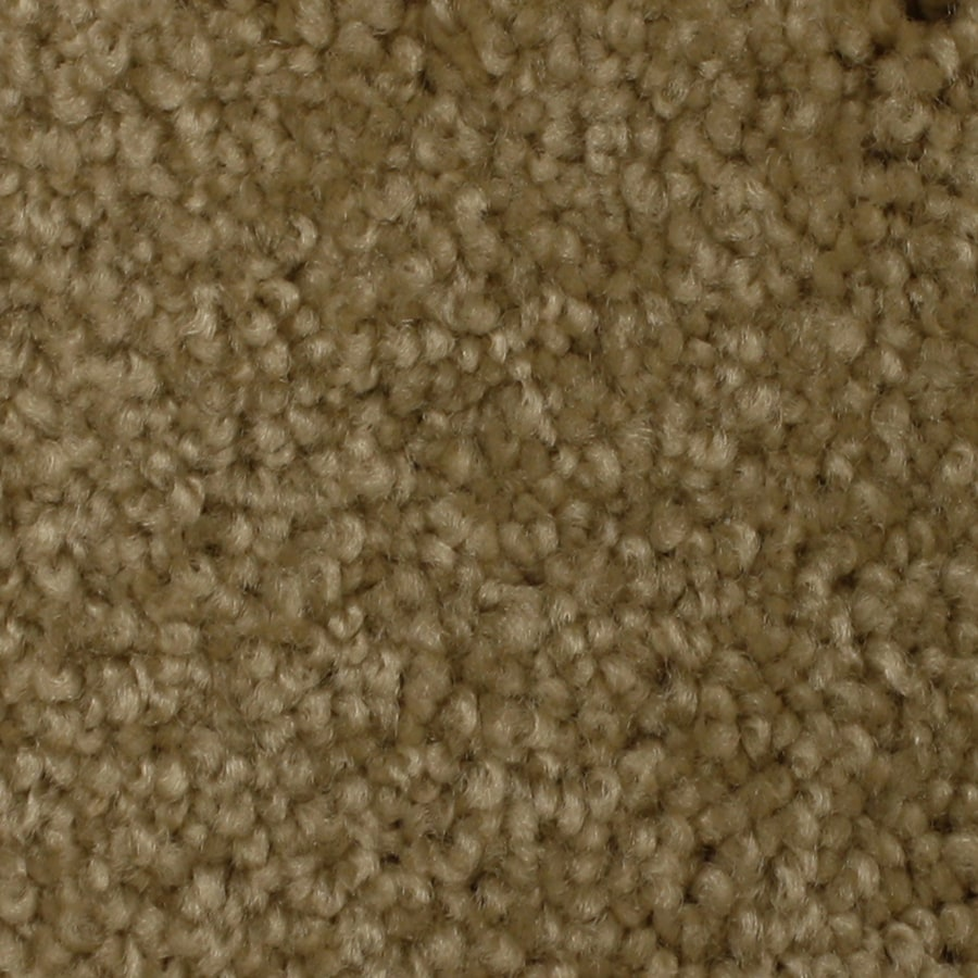 STAINMASTER Solarmax Westwind Harmony Textured Indoor Carpet