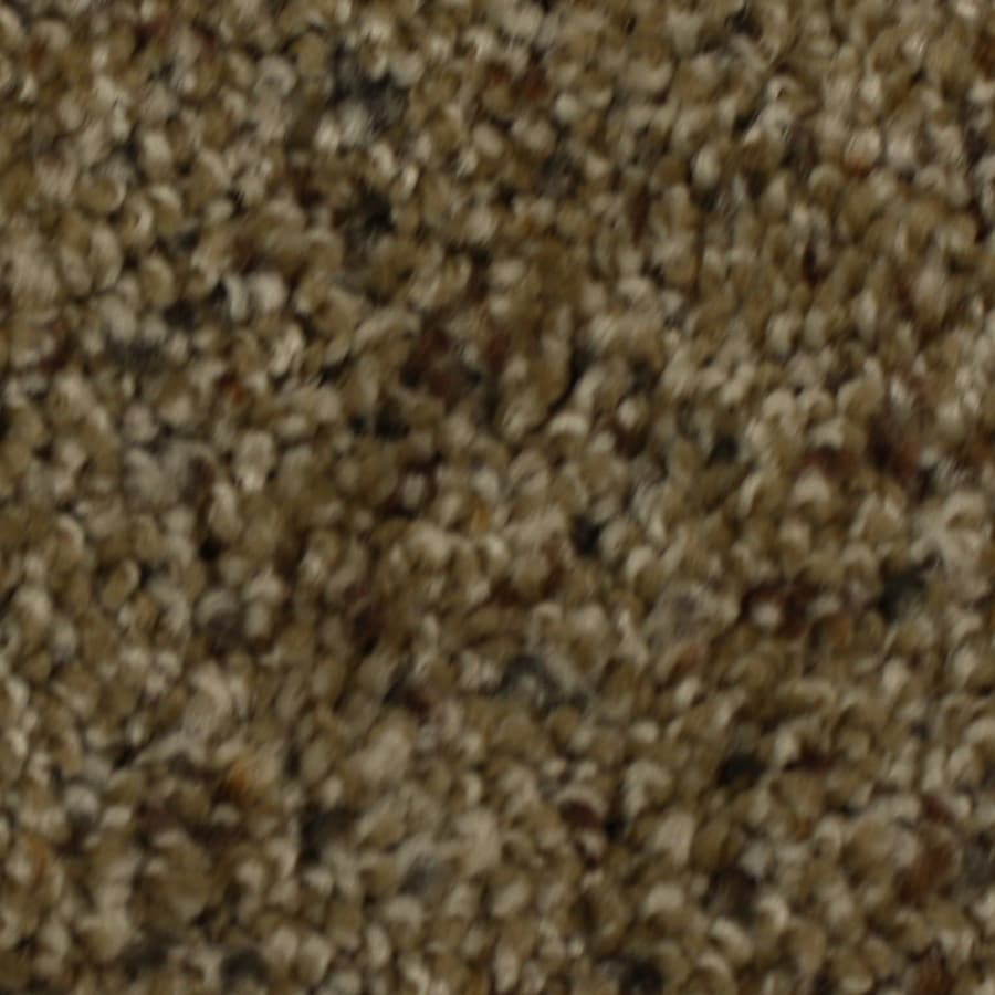 STAINMASTER Solarmax Barefoot Manor Generosity Frieze Indoor Carpet