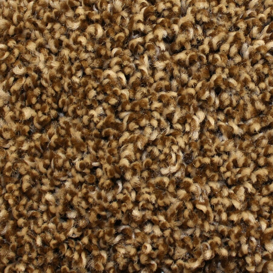 Looptex Mills Ozark Legend Multi Cut Pile Indoor Carpet