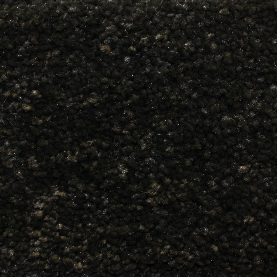 Looptex Mills Rush Landing Black Cut Pile Indoor Carpet