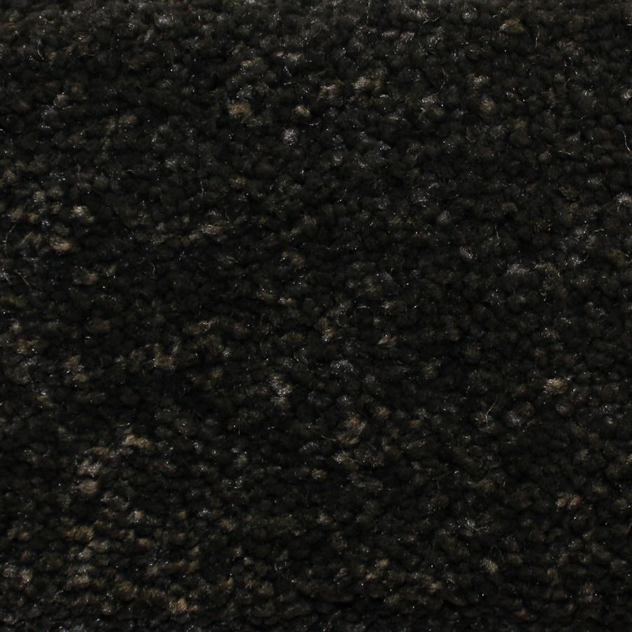 Black Carpet Carpet Vidalondon