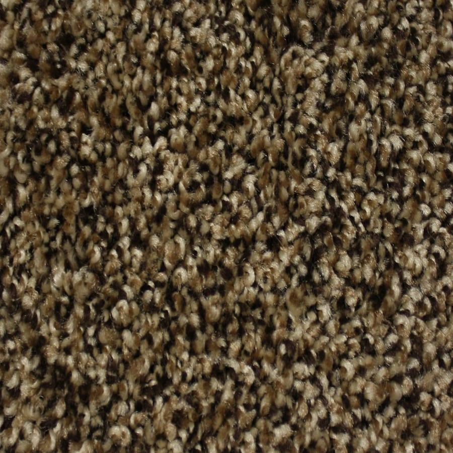 STAINMASTER Essentials Palmer Pioneer Textured Interior Carpet