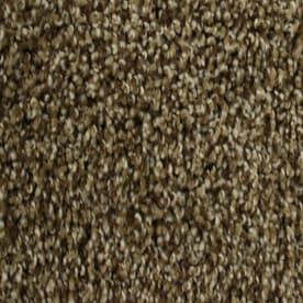 Stainmaster Petprotect Nitro 12 Ft Textured Interior Carpet