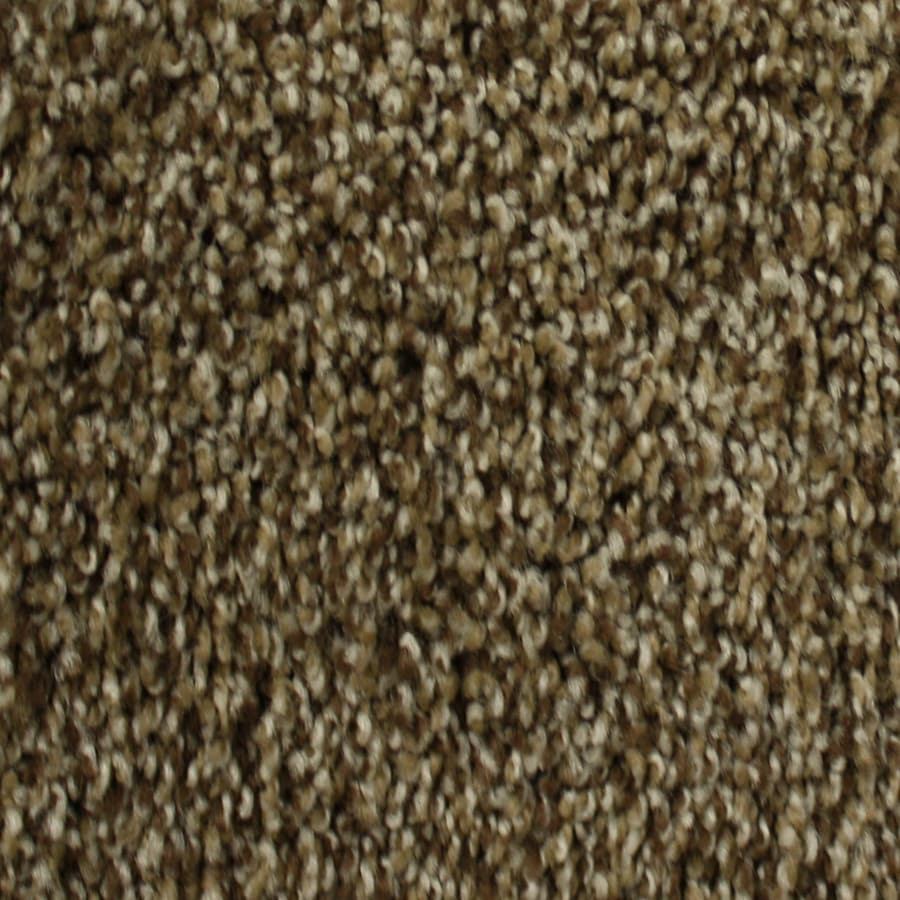 Shop STAINMASTER PetProtect Nitro 12-ft W x Cut-to-Length Milky way ...