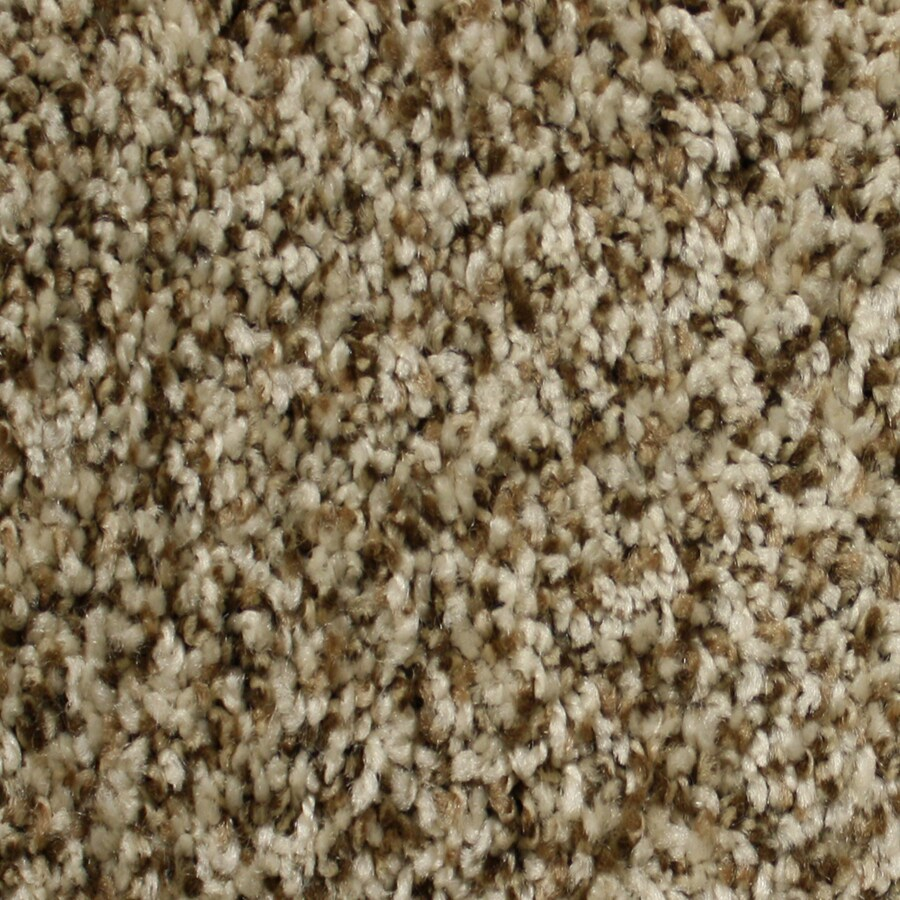 STAINMASTER Essentials Notorious Dodge City Textured Indoor Carpet