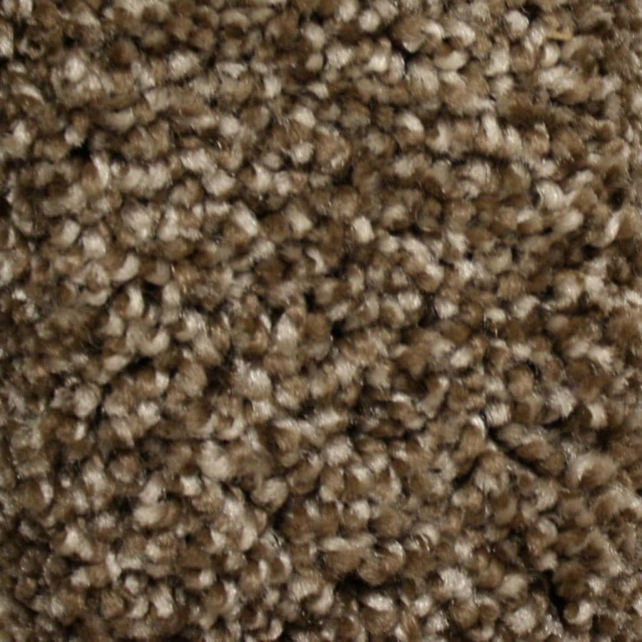 STAINMASTER Essentials Cadiz 12-ft W  x Cut-to-Length Peak Time Textured Interior Carpet