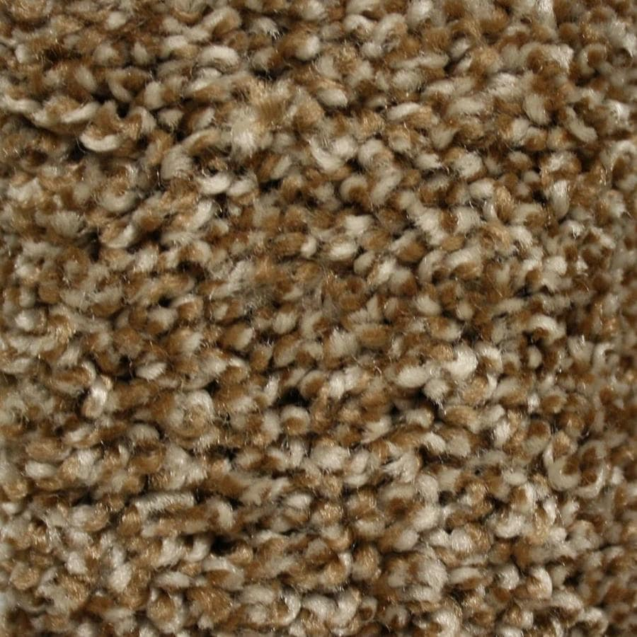 STAINMASTER Essentials Valmeyer 12-ft W  x Cut-to-Length Step Free Textured Interior Carpet