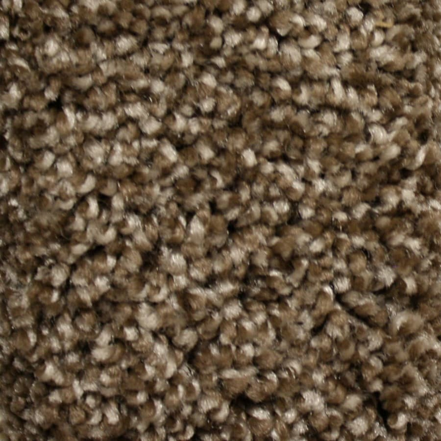 STAINMASTER Essentials Valmeyer Peak Time Textured Indoor Carpet