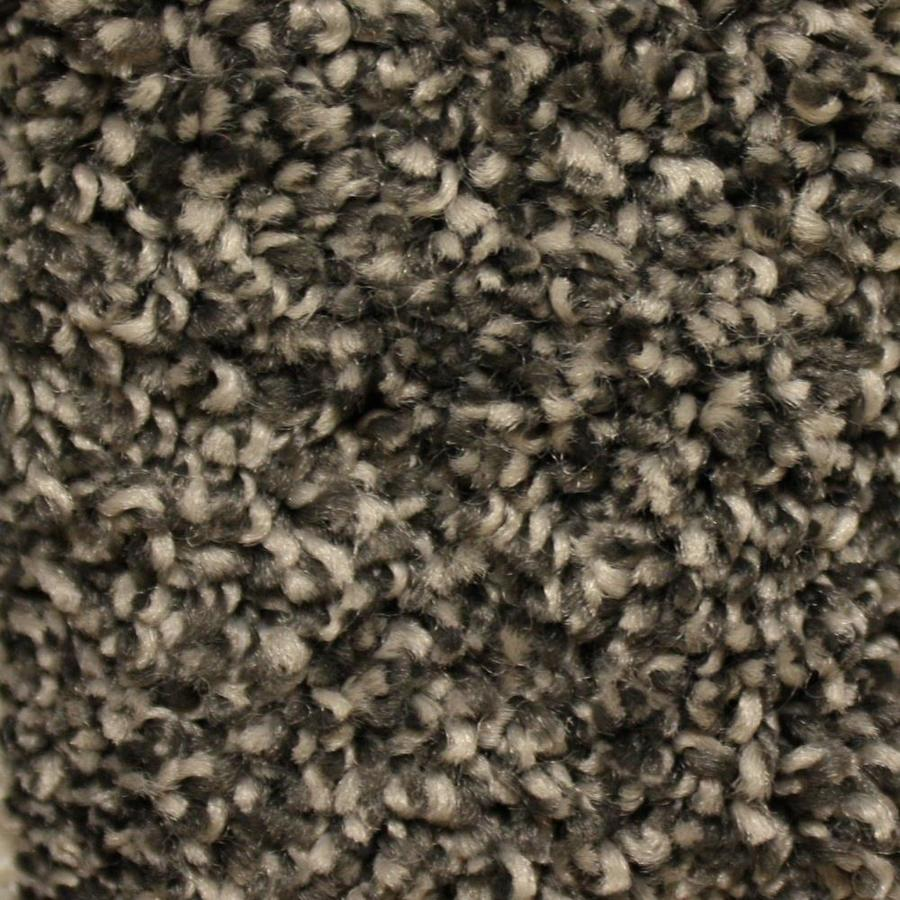 STAINMASTER Essentials Valmeyer 12-ft W  x Cut-to-Length Dominated Textured Interior Carpet