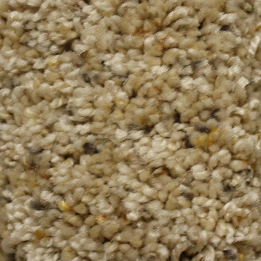 STAINMASTER Essentials Valmeyer Key Role Textured Interior Carpet