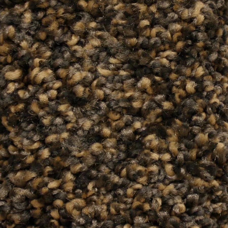 STAINMASTER Essentials Valmeyer Moorgate Textured Interior Carpet