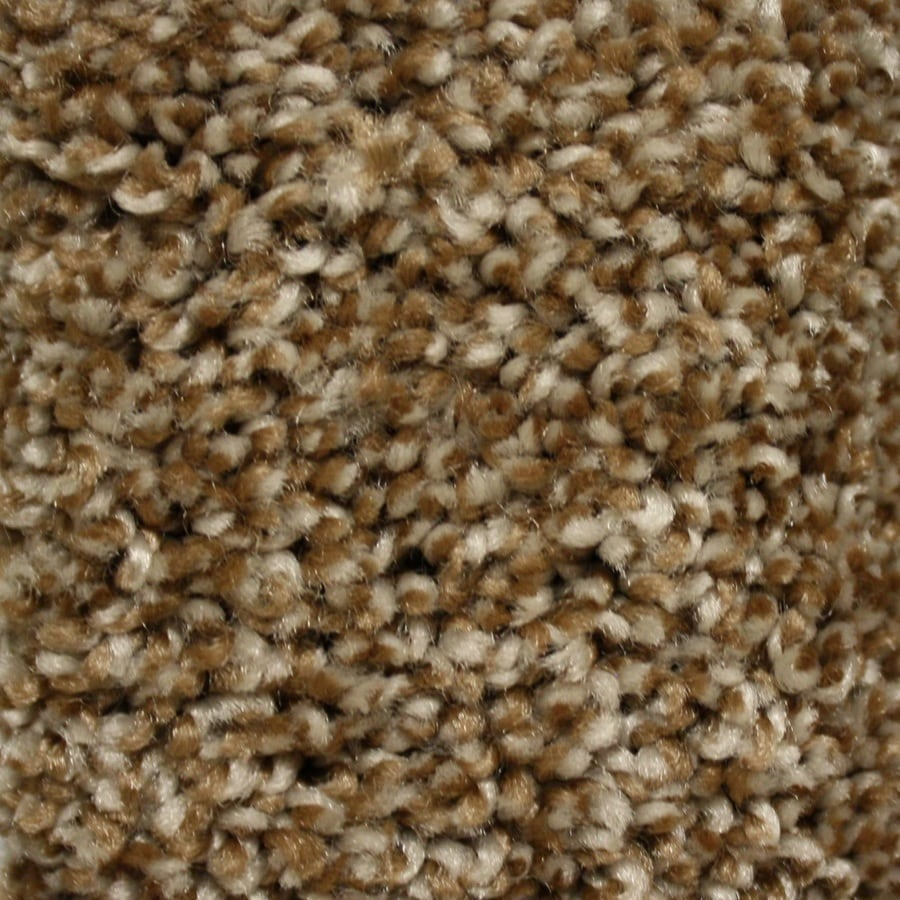 STAINMASTER Essentials Summer Step Free Textured Indoor Carpet