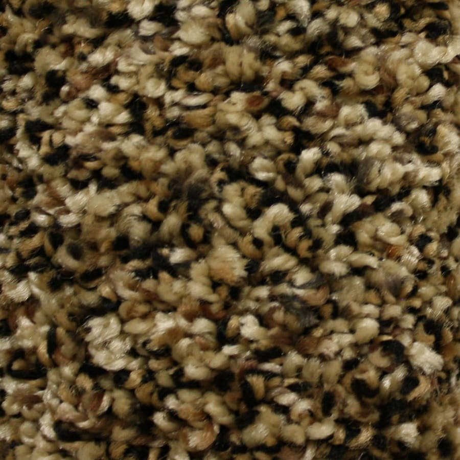 STAINMASTER Essentials Summer 12-ft W  x Cut-to-Length Freedom Pass Textured Interior Carpet