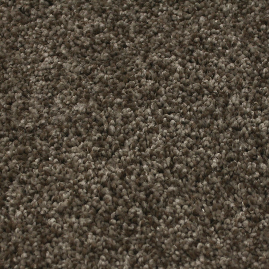 STAINMASTER Essentials Nolin 12-ft W x Cut-to-Length Dusty Taupe Textured Interior Carpet