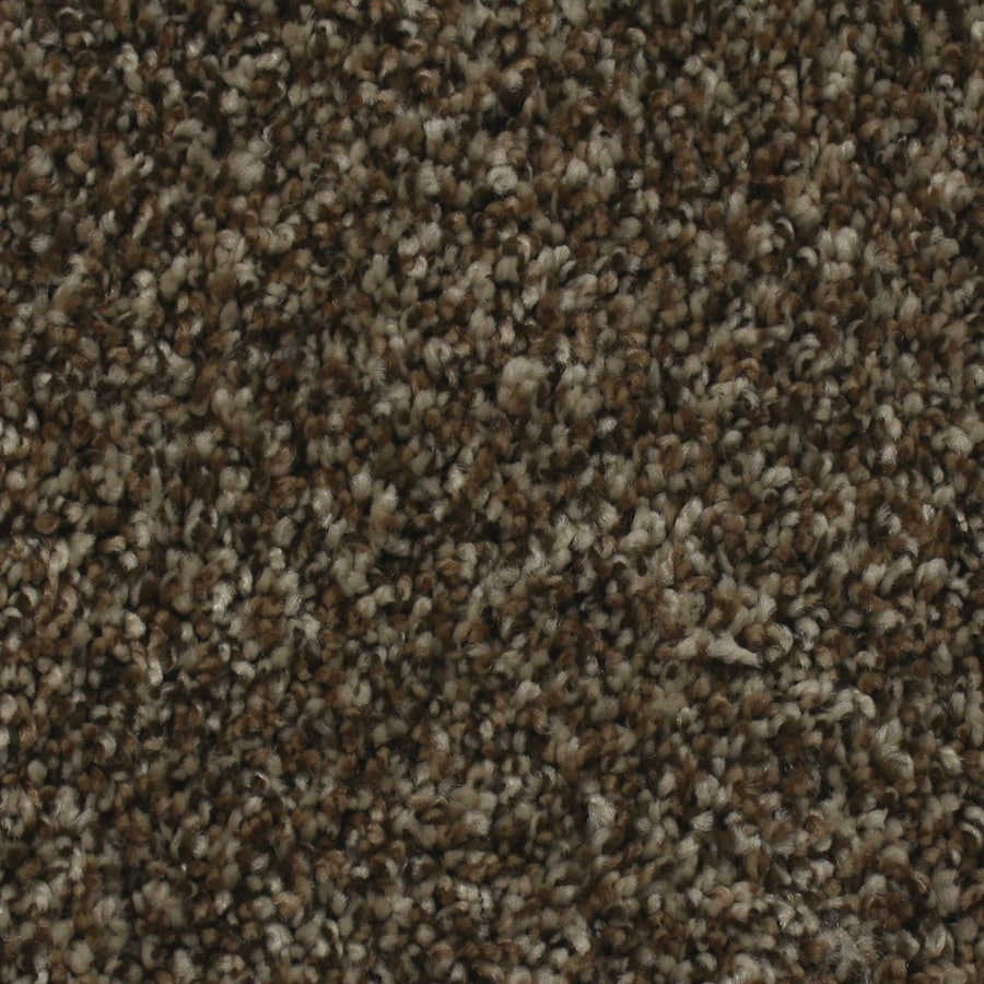 STAINMASTER Essentials Nolin Sand Storm Textured Interior Carpet