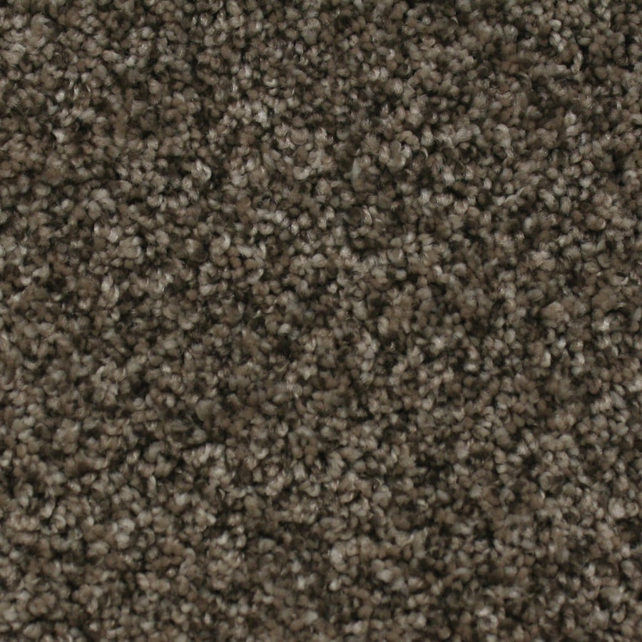 STAINMASTER Essentials Nolin Tender Tan Textured Interior Carpet