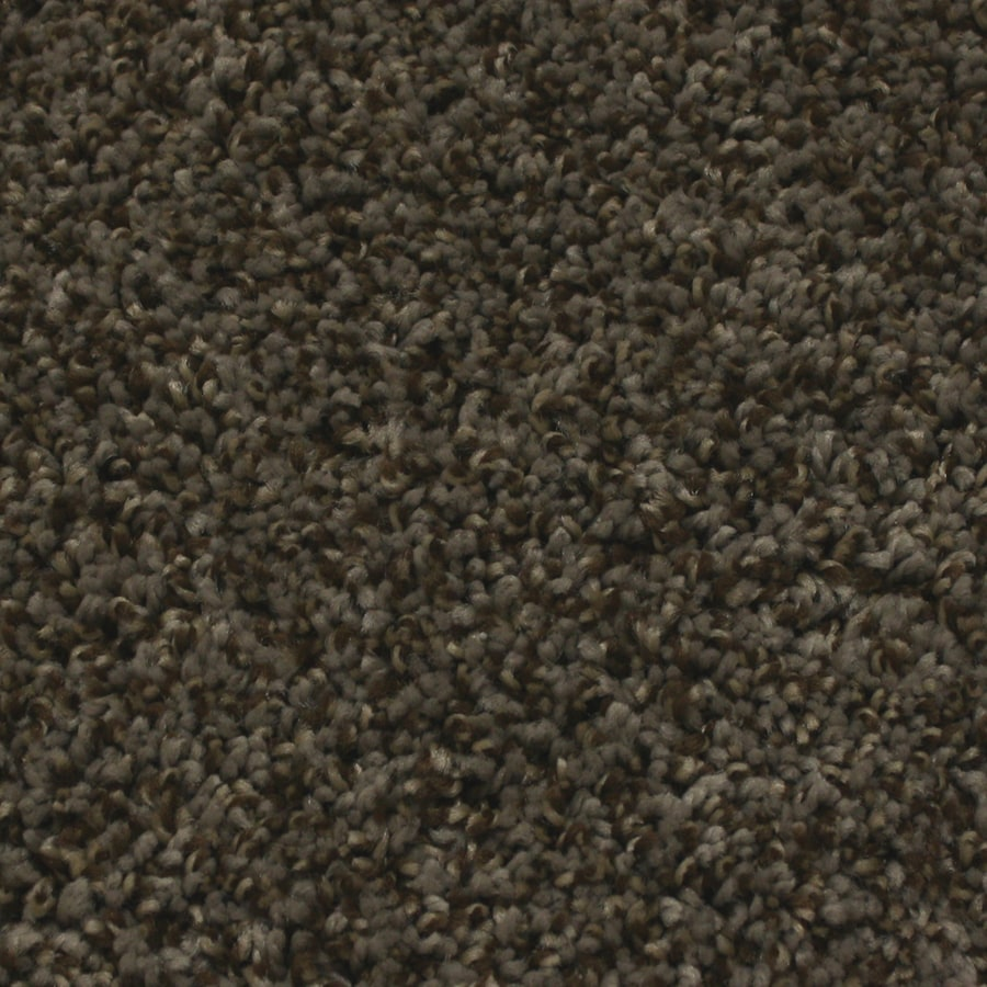 STAINMASTER Essentials Nolin Twilight Textured Interior Carpet