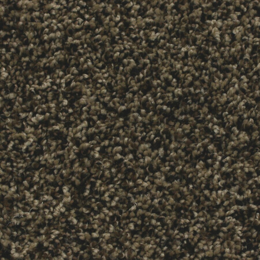STAINMASTER Essentials Nolin 12-ft W x Cut-to-Length Flawless Textured Interior Carpet