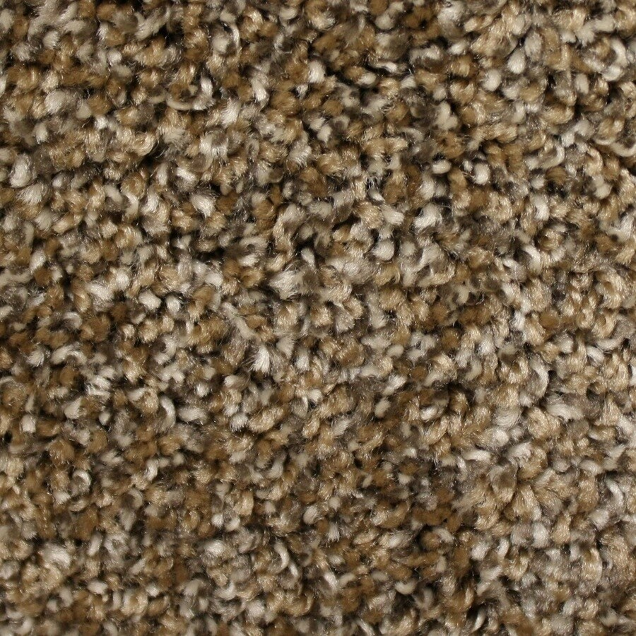Phenix Cornerstone Coquina Brown Chert Textured Interior Carpet