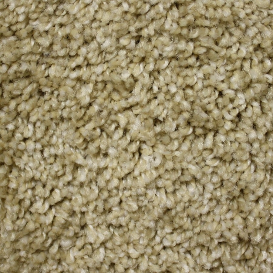 Phenix Cornerstone Coquina 12-ft W x Cut-to-Length Little Sandy Textured Interior Carpet