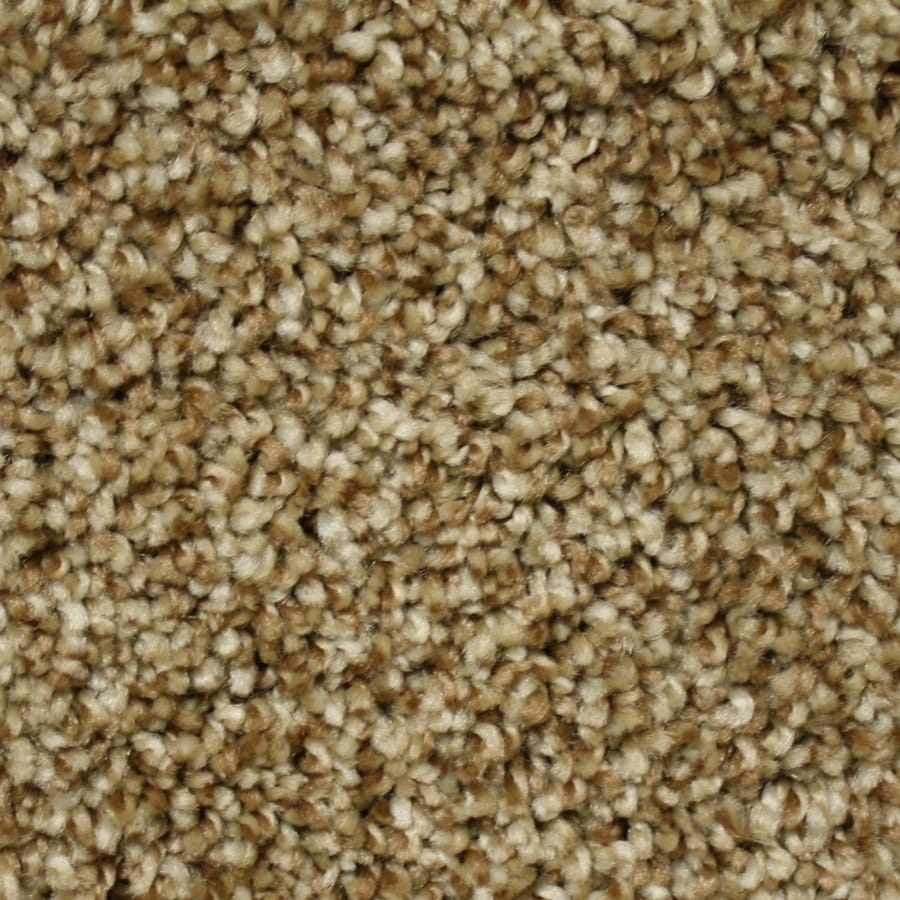 Phenix Cornerstone Coquina Rocky Path Textured Interior Carpet
